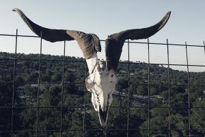 Πάνω από τον Σασμό βρίσκεται ο Όρκος των βοσκών της Κρήτης