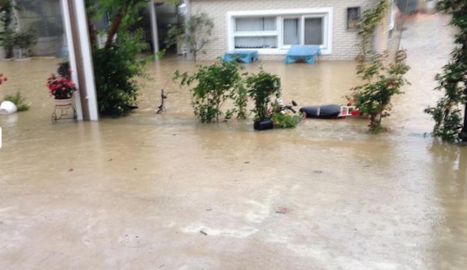 Λευκάδα: Εικόνες καταστροφής στην Βασιλική από την κακοκαιρία - Σε απόγνωση οι κάτοικοι