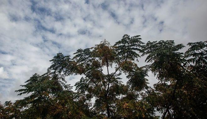 Συννεφιασμένος ουρανός πάνω από την πόλη των Τρικάλων
