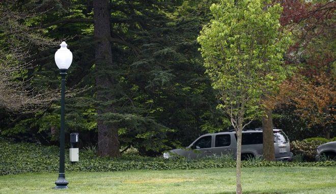 Η βελανιδιά - σύμβολο φιλίας των Ντόναλντ Τραμπ και Εμανουέλ Μακρόν