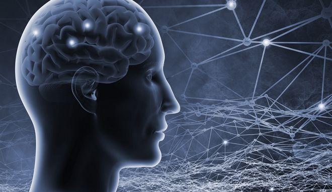 3D illustration του εγκεφάλου