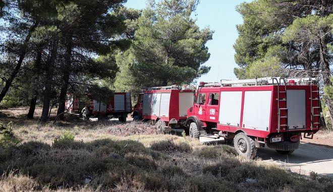 Οχήματα της Πυροσβεστικής - Φωτό αρχείου
