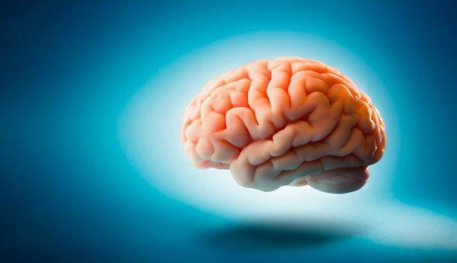 Επιστήμονες ερευνούν την πιθανότητα να επαναφέρουν σε λειτουργία εγκεφάλους νεκρών