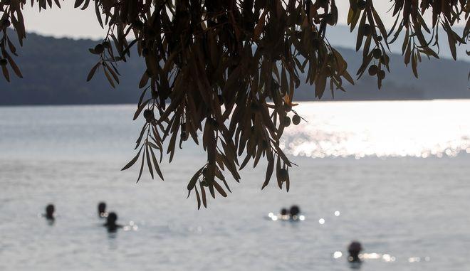 Στιγμιότυπο από την παραλία του Μαραθιά στο νότιο Πήλιο.