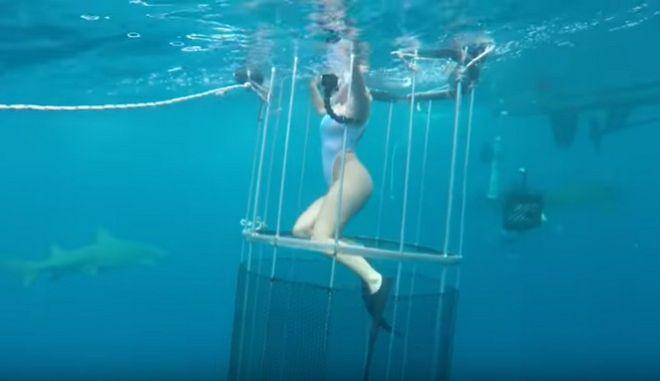 Καρχαρίας δάγκωσε πορνοστάρ που γύριζε υποθαλάσσιο βίντεο