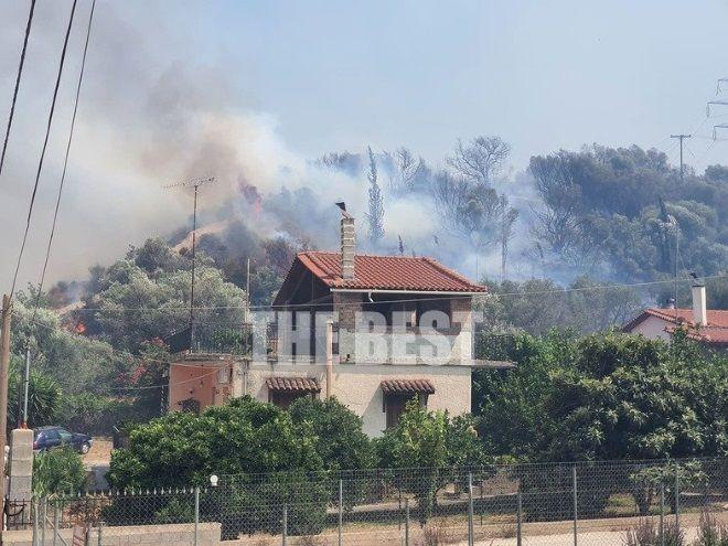 Στιγμιότυπο από τη μεγάλη φωτιά στη Ζήρεια Αχαΐας