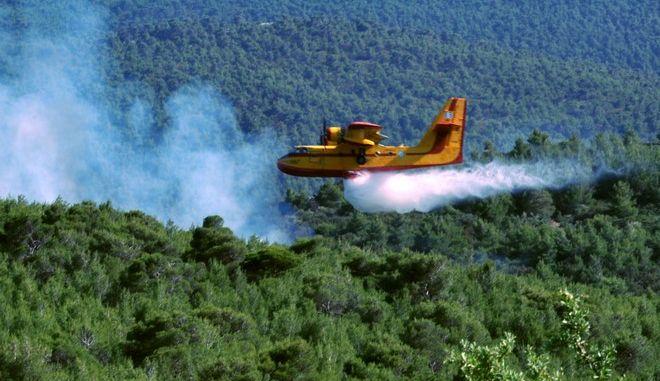 Πυροσβεστικό αεροπλάνο επιχειρεί για την κατάσβεση της πυρκαγιάς σε δασική έκταση στα Βίλια, στην περιοχή Προφήτης Ηλίας τοπ Σάββατο 13 Ιουνίου 2015. Στο έργο της κατάσβεσης συμμετέχουν 25 πυροσβέστες με 11 οχήματα, 2 ομάδες πεζοπόρο τμήμα και από αέρος 1 ελικόπτερο και τέσσερα αεροσκάφη.  (EUROKINISSI/ΑΝΤΩΝΗΣ ΝΙΚΟΛΟΠΟΥΛΟΣ)