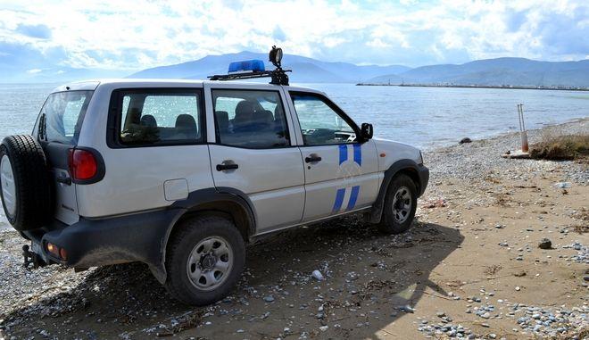 ΑΡΓΟΛΙΔΑ-Νεκρή θαλάσσια χελώνα καρέτα-καρέτα βρέθηκε στη παραλία της Νέας Κίου. Στην περιοχή αυτή πολύ συχνά  ξεβράζονται νεκρές θαλάσσιες χελώνες. Ενημερώθηκε το Λιμεναρχείο Ναυπλίου και λιμενικοί περισυνέλεξαν την νεκρή χελώνα . (eurokinissi)