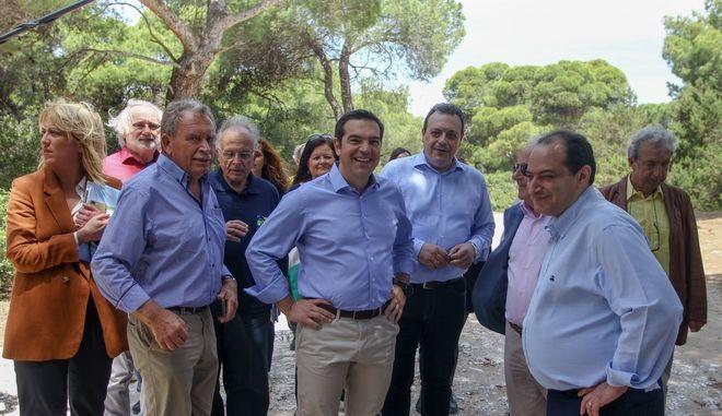 Επίσκεψη του προέδρου του ΣΥΡΙΖΑ, Αλέξη Τσίπρα  με αφορμή την Παγκόσμια Ημέρα Περιβάλλοντος, στο Εθνικό Πάρκο Σχινιά Μαραθώνα όπου και είχε  συνάντηση με τον Πρόεδρο και τους εργαζόμενους του Φορέα Διαχείρισης του Πάρκου, την Παρασκευή 5 Ιουνίου 2020. (EUROKINISSI/ΘΑΝΑΣΗΣ ΔΗΜΟΠΟΥΛΟΣ)