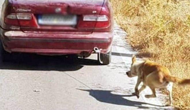 Κτηνωδία στην Κρήτη: Έδεσε σκύλο στον προφυλακτήρα και τον έσερνε