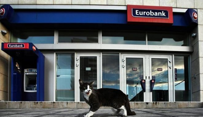A hungry stray cat is begging for some food outside a Eurobank branch, on the Northern suburbs of Athens. According to leaked information some 25 European Banks had failed the health check of the European Central Bank. These banks will have until November 10 to fill in capital shortfalls. The same info states that Greece has two of it's major Banks failing the stress test. The actual report is due on Sunday, October 26. In Athens, on Oct. 25, 2014 /      , 25               .            .       26 . , 25 , 2014