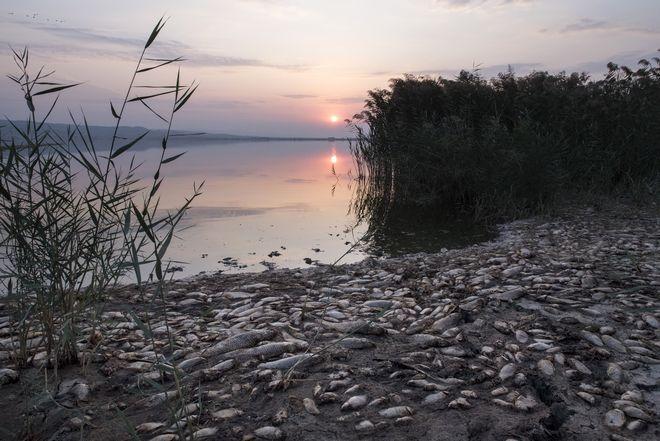 Εικόνα από τη λίμνη Κορώνεια